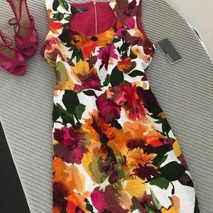 Donna Ricco Floral Print Zippered Back Dress